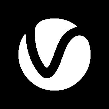 v-ray.co.il favicon